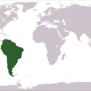 export south america
